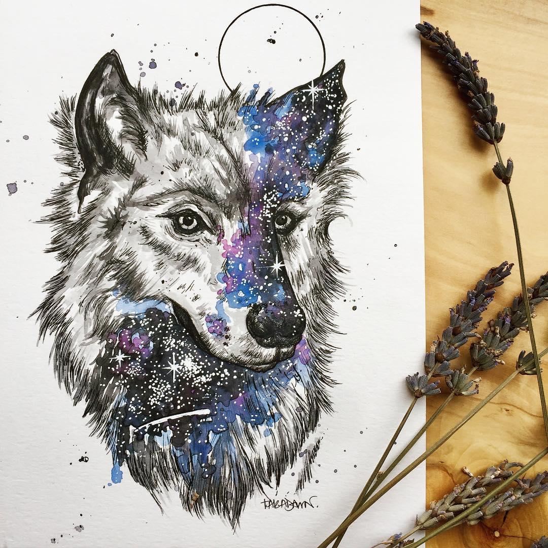 Illustration by Tara Archer